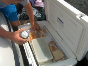 Max Cooler Companion keeps your food and your bait organized while fishing and boating.